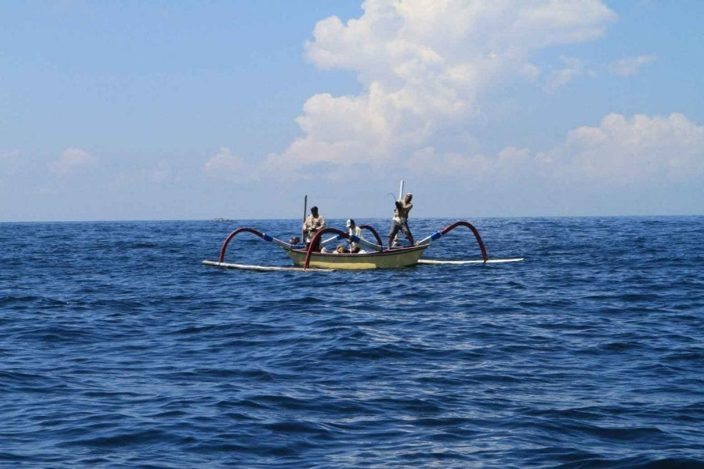 BALI: Balinese Offshore Fishing 7