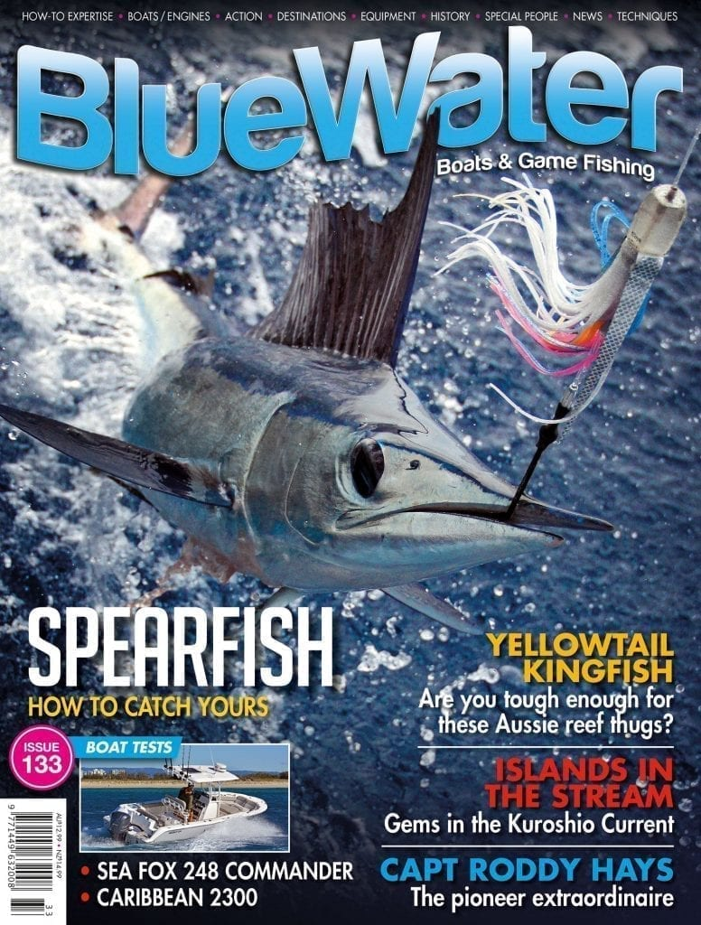 BlueWater Issue 133 Cover