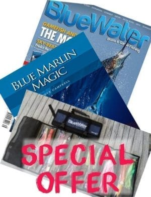 Bluewater Subscription Special