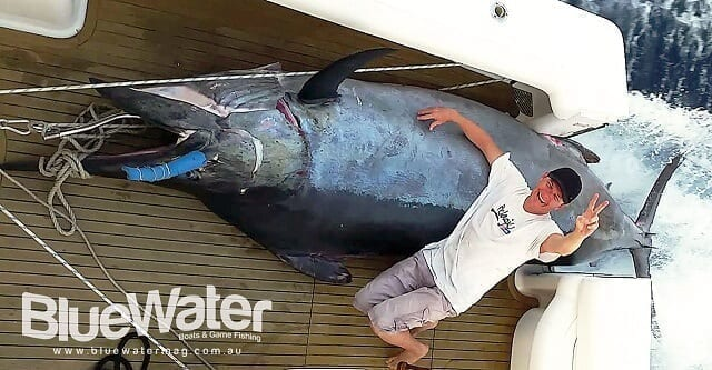 BW136 Black Marlin Insights