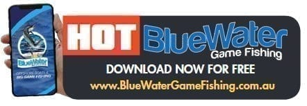Hot Blue Water Game Fishing