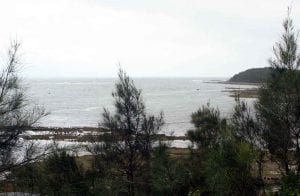 NSW: Greenwell Point Offshore Fishing