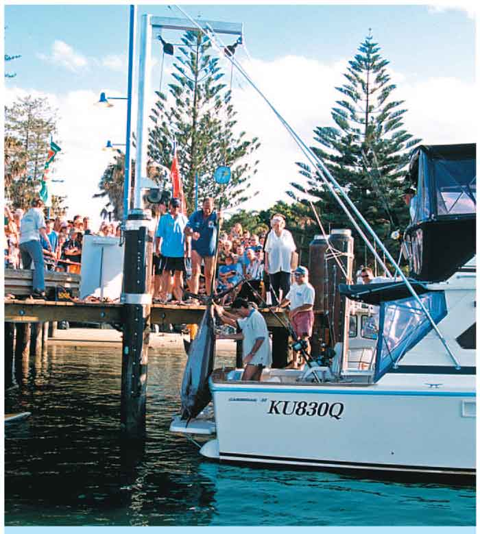 NSW: Port Macquarie Offshore Fishing